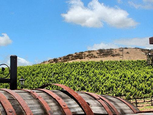 Tech beat: Aztecs plan solar-powered winery