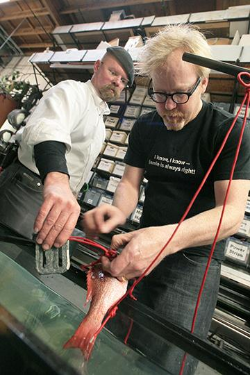 Weekend Picks: Mythbusters and Heavy Metal