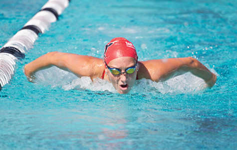 Swim and dive to make waves in 2014