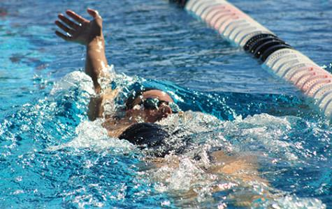 Swimmers' streak continues against Colorado State, Idaho