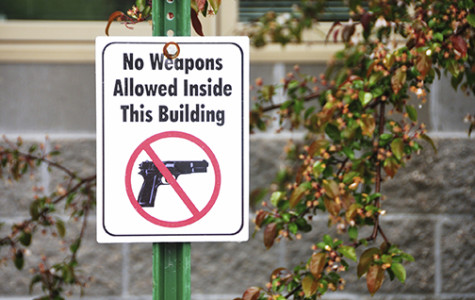 Concealed gun law misses the mark