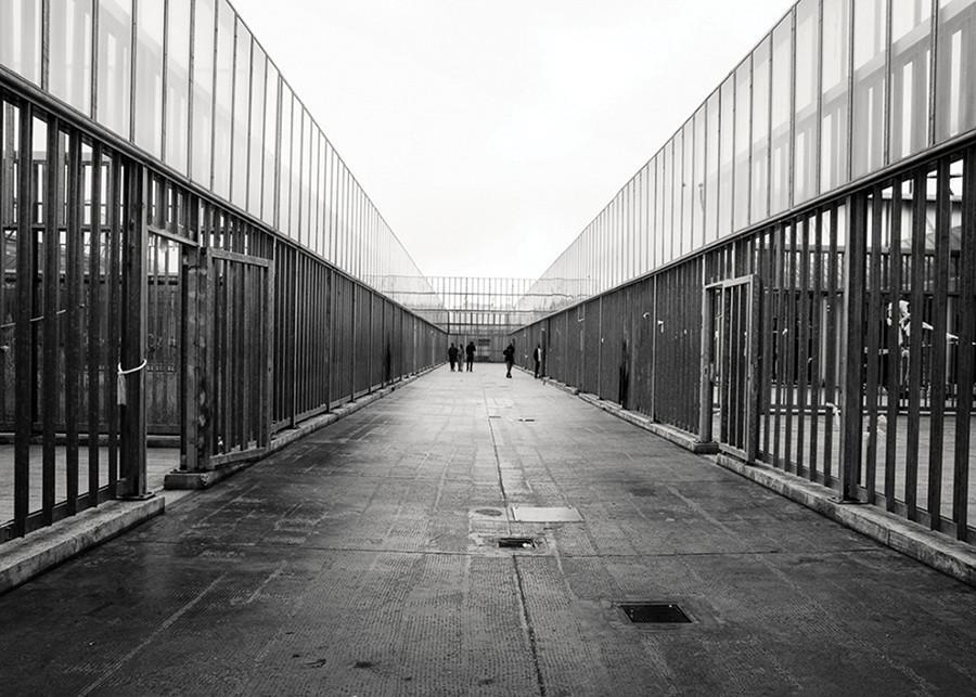 SDSU+tells+stories+of+Italian+migrants