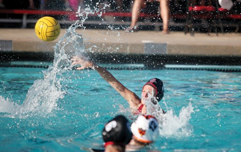 SDSU water polo doesn't lack any experience this season