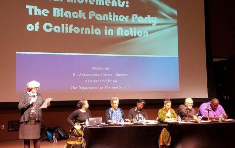 Partido Pantera Negra y su activismo