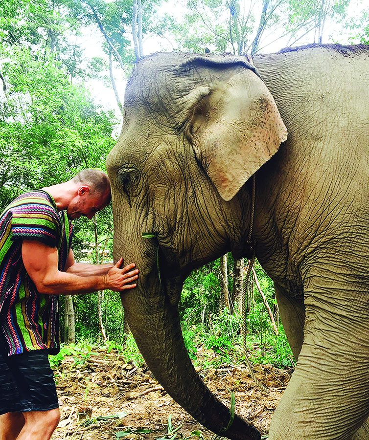 Michael+McHan+interacts+with+an+elephant+in+Chaing+Mai%2C+Thailand+during+his+summer+faculty-led+program.