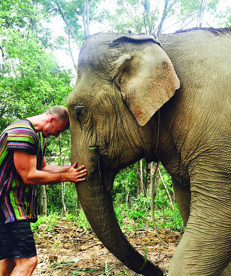 Michael McHan interacts with an elephant in Chaing Mai, Thailand during his summer faculty-led program.
