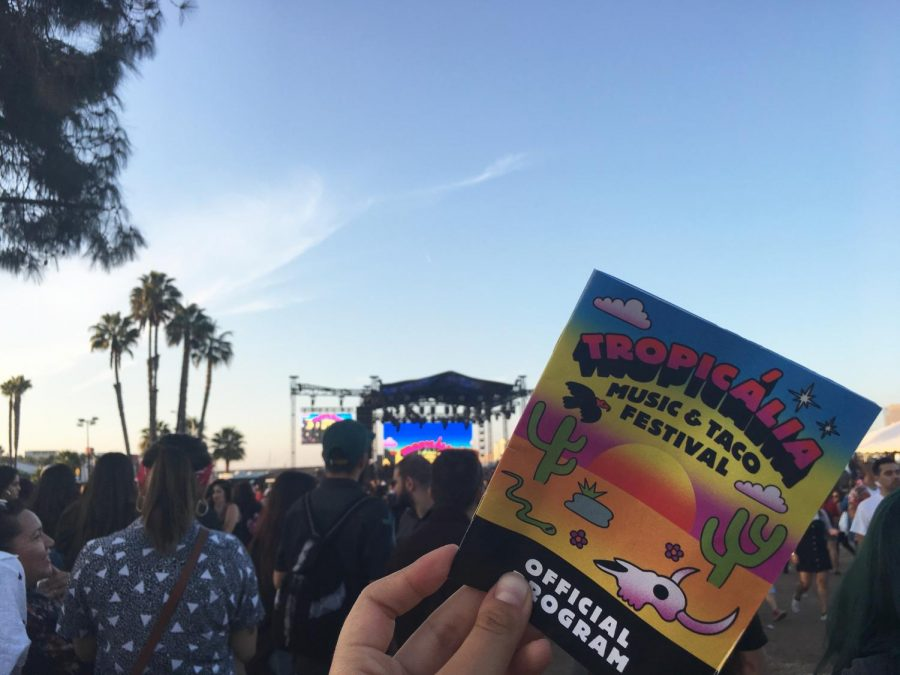 Large crowds gathered during the Low End Theory DJ set at Tropicália Music and Taco Festival on Nov. 11.