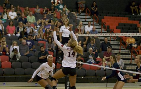 Senior setter finds her place on the Mesa