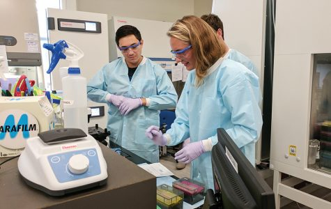 Internship 'bridges' students to professional stem cell researchers