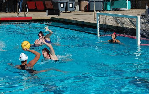 Nationally ranked women's water polo starts year with high expectations