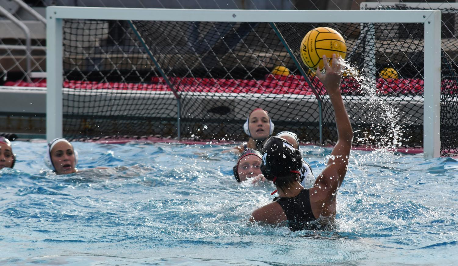 Freshman driver Karli Canale prepares to pass the ball during the Aztecs 5-2 loss against Loyola Marymount University on March 9 at the Aztec Aquaplex.