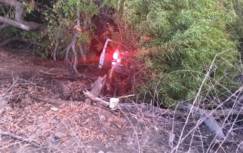 Car careens into ditch near campus