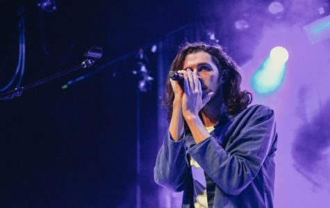 Hozier took the stage at the Observatory on Oct. 15.