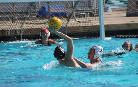 Water polo defeated by familiar faces in annual alumni game