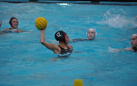 Water polo overcomes Toronto, rain, during exhibition match
