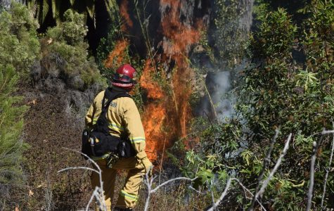 Brush fire near SDSU sparks road closure, apartment evacuations