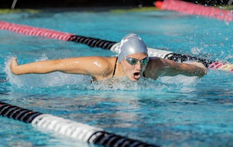 Swimming and diving wins first home meet of year