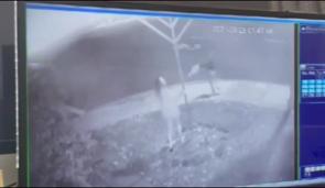 Screenshot from surveillance footage shows woman breaking Menorah.