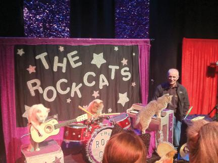 Acro-Cats rock for an absurdly fun evening