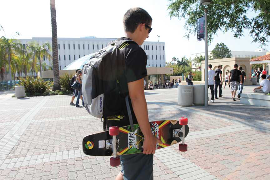 Supporting the skate ban