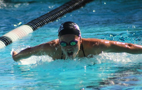 Swimmers, divers defeat Hawaii in dual meet