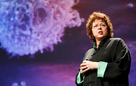Panel talks Ebola outbreak origins
