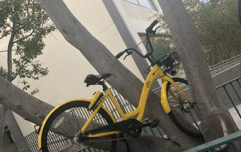 Dockless bikes hit with vandalism on campus