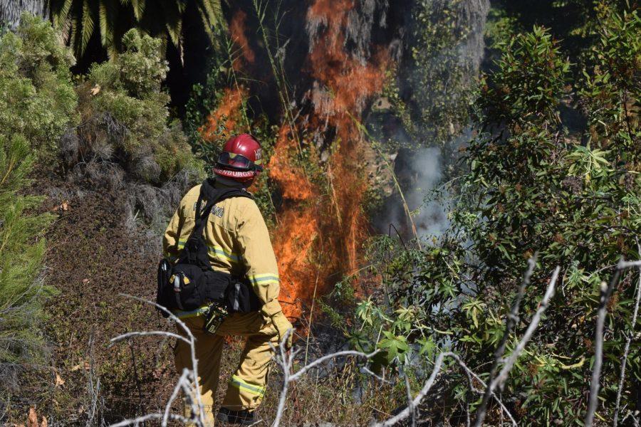 Bombero+sofoca+incendio+de+maleza+al+este+del+campus+y+caus%C3%B3+evacuaciones.+