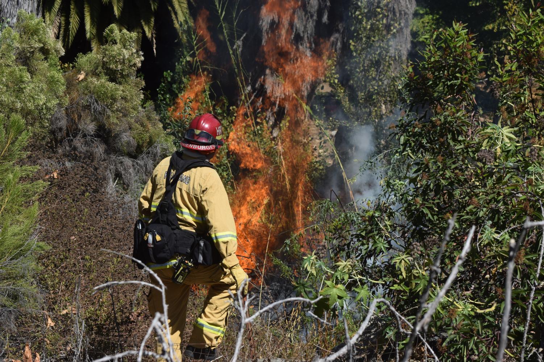 Bombero sofoca incendio de maleza al este del campus y causó evacuaciones.