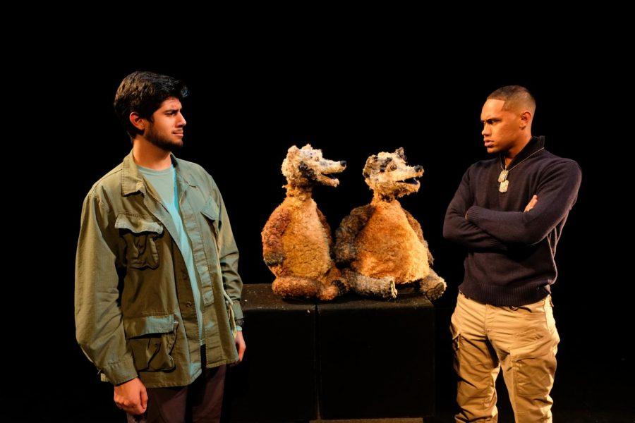 Actors, including the badgers, play scenes from