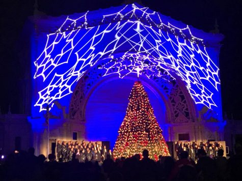There were lots of lights throughout Balboa Park for December Nights, including this huge Christmas tree.