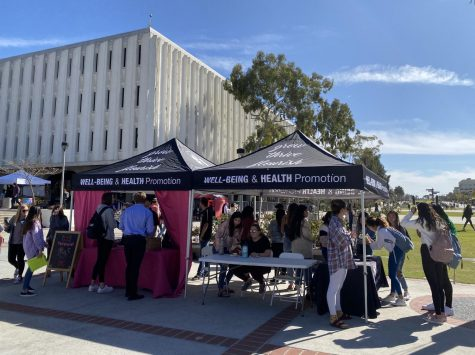 SDSU crime and incident report: Domestic violence, new safety app
