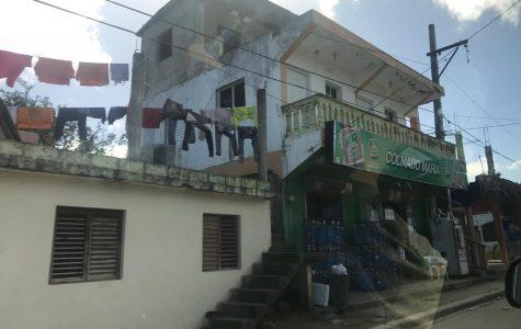 Las raíces dominicanas que no se pueden arrancar