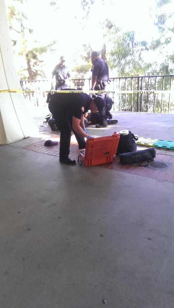 Bike thief arrested on campus